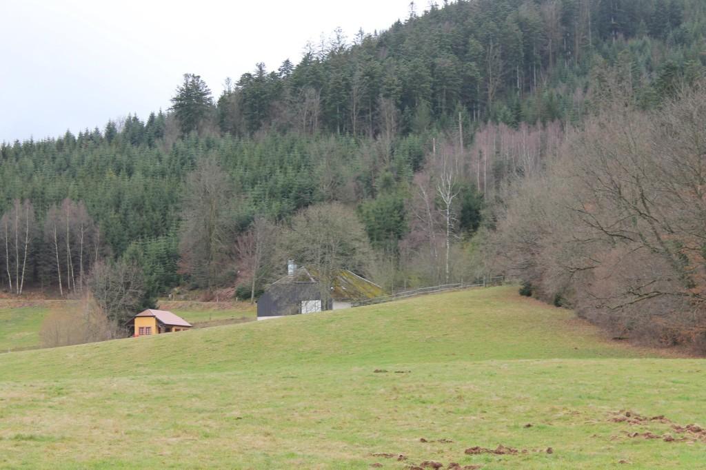 vieux moulin 10