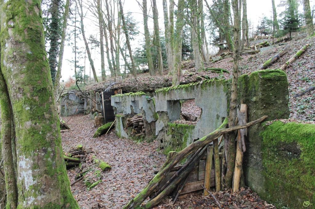 vieux moulin 24