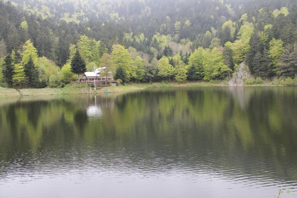 lac des perches 11