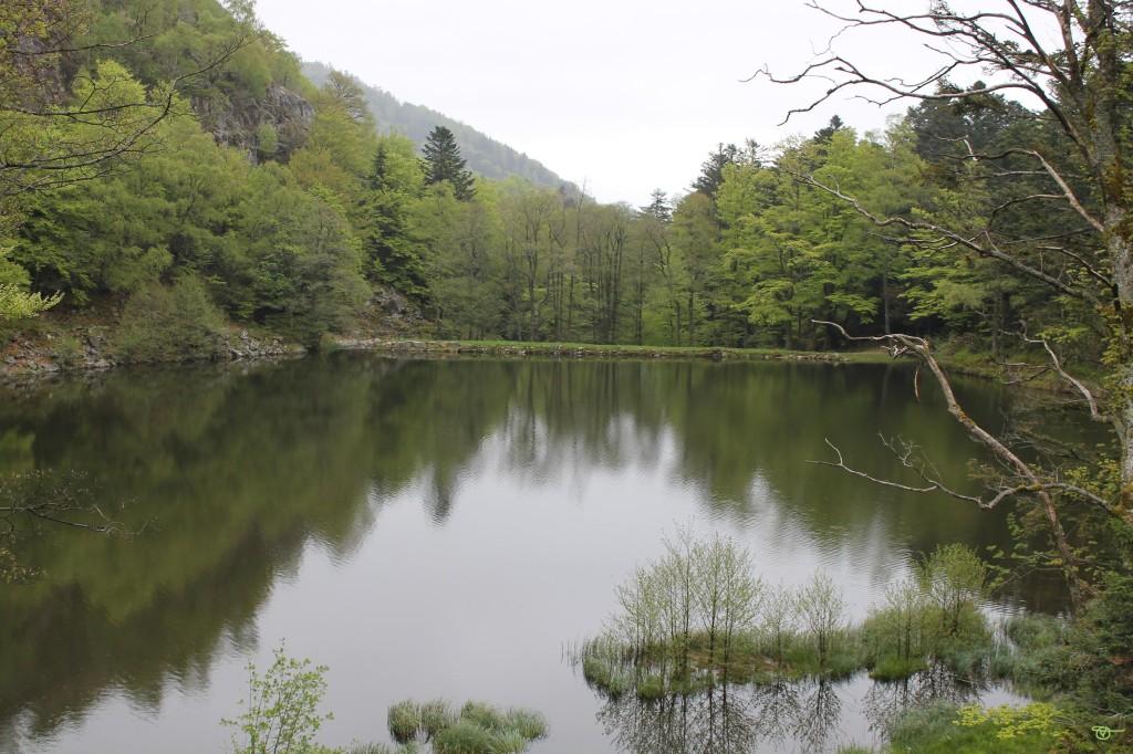 lac des perches 12