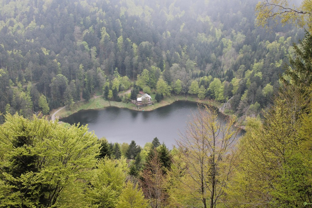 lac des perches 9
