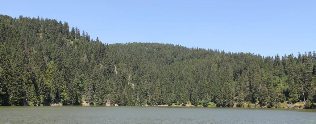 lac vert 3